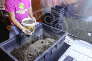 Mixing-in Bactoforce (Mycorrhizae) to the soil