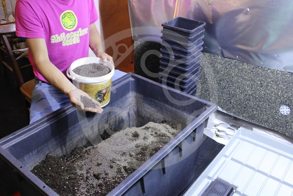 5 Litros Sustrato organico humus de lombriz favorece enraizamiento y desarrollo