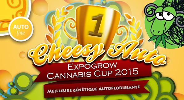 CHEESY-AUTO_CAMPIONA_EXPOGROW_FRANC.jpg