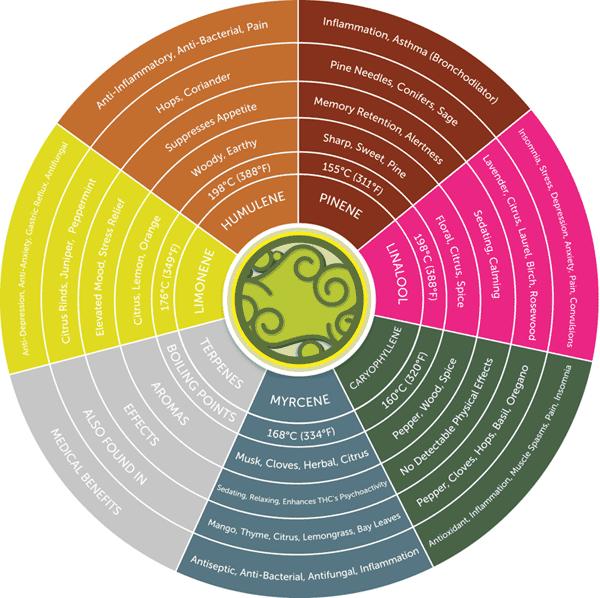 Terpene/effect chart
