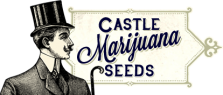 Castle Marijuana Seeds