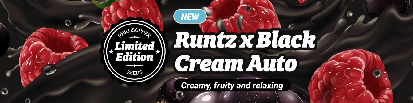 Runtz x Black Cream Auto