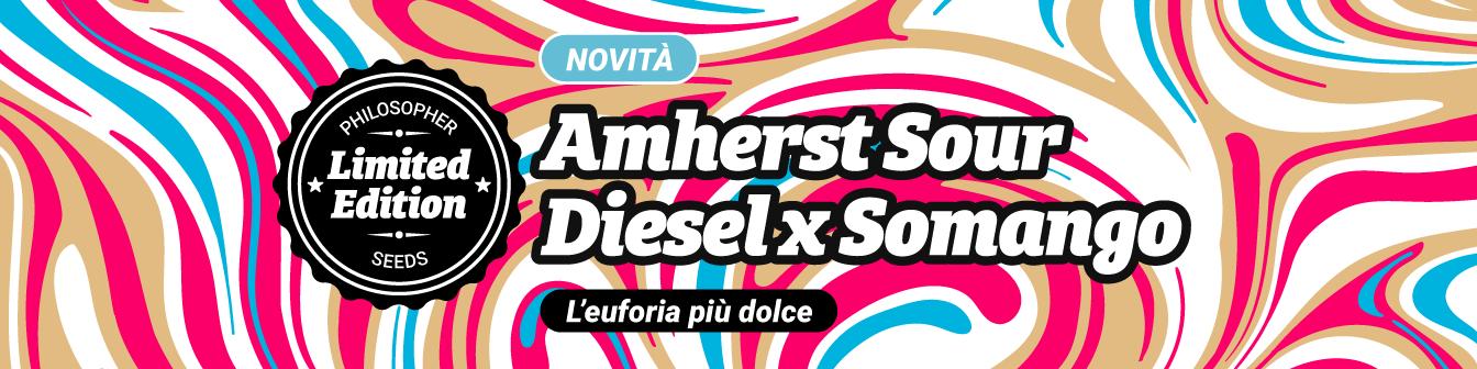 Amherst Sour Diesel x Somango